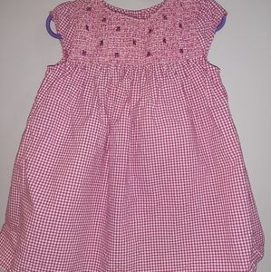Gymboree Smocked Pink Gingham Ladybug Dress 18 24